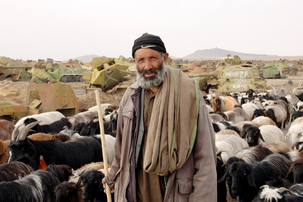 """Shepherd"": Afghanistan Matters (CC BY 2.0)"
